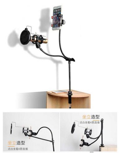 Stand Arm Microphone Flexible + Lazypod Smartphone Holder